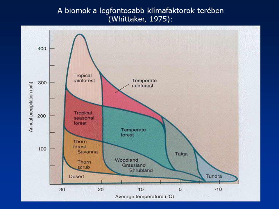 A biomok a legfontosabb klímafaktorok terében (Whittaker, 1975):