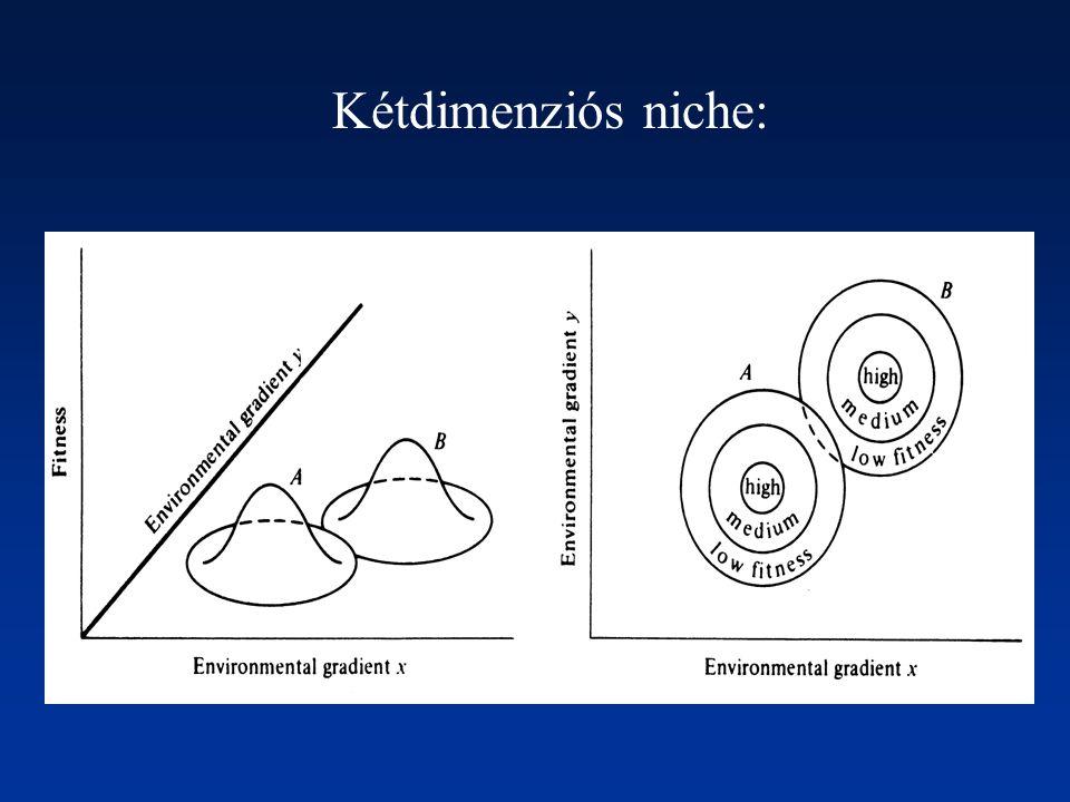 Kétdimenziós niche: Több környezeti változó: többdimenziós niche.