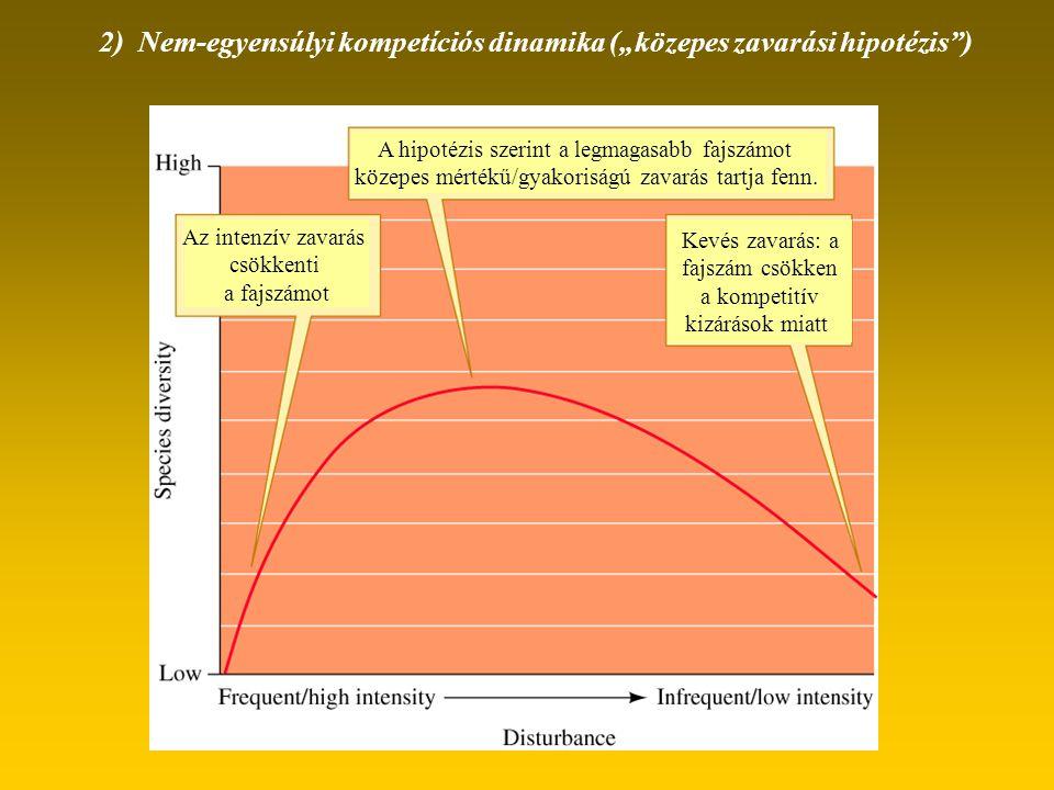 """2) Nem-egyensúlyi kompetíciós dinamika (""""közepes zavarási hipotézis )"""