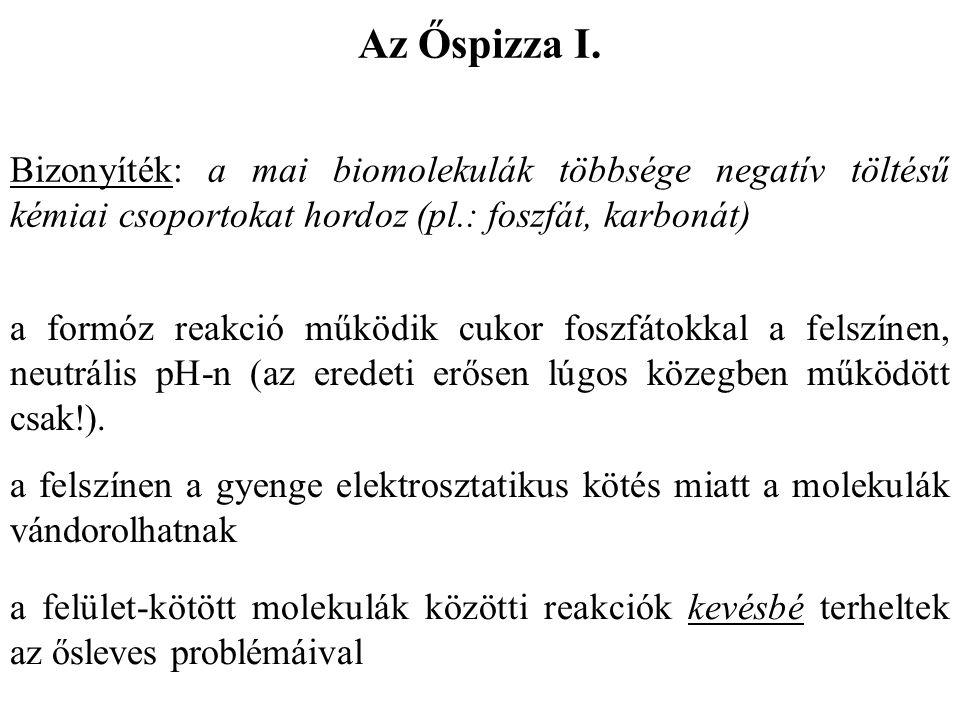 Az Őspizza I. Bizonyíték: a mai biomolekulák többsége negatív töltésű kémiai csoportokat hordoz (pl.: foszfát, karbonát)