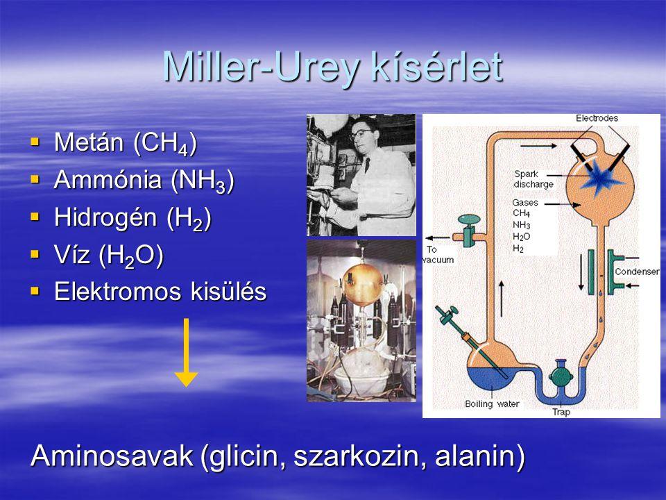 Miller-Urey kísérlet Aminosavak (glicin, szarkozin, alanin)