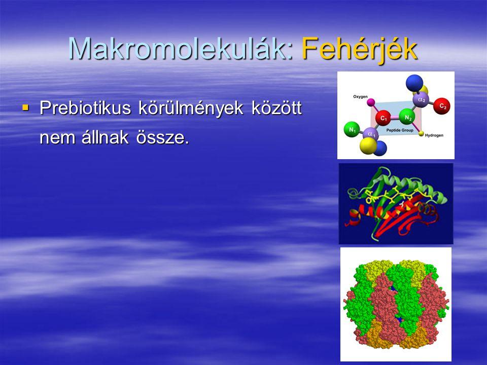 Makromolekulák: Fehérjék