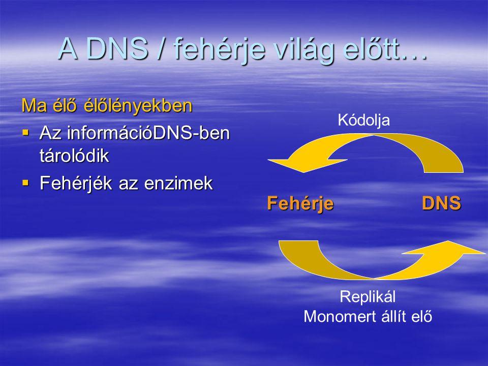 A DNS / fehérje világ előtt…