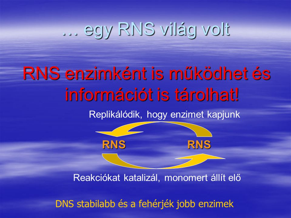 RNS enzimként is működhet és információt is tárolhat!
