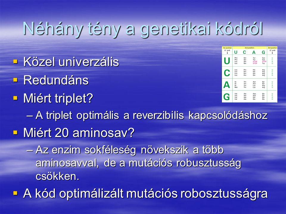 Néhány tény a genetikai kódról