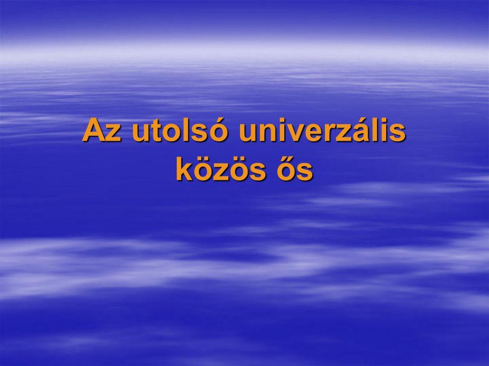 Az utolsó univerzális közös ős