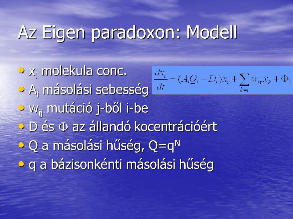Az Eigen paradoxon: Modell