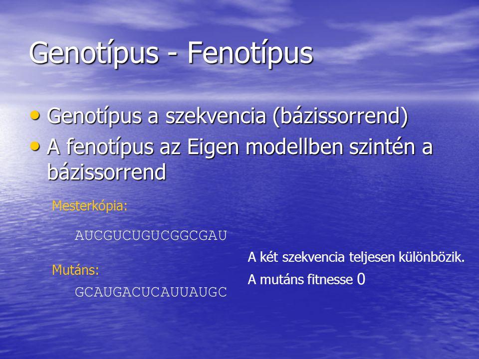 Genotípus - Fenotípus Genotípus a szekvencia (bázissorrend)