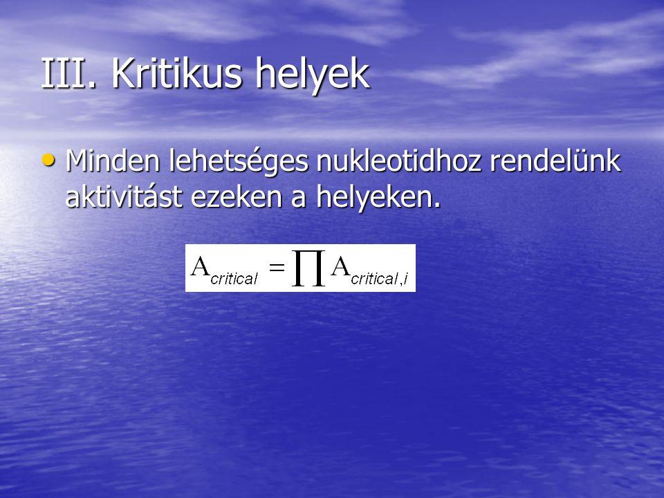 III. Kritikus helyek Minden lehetséges nukleotidhoz rendelünk aktivitást ezeken a helyeken.