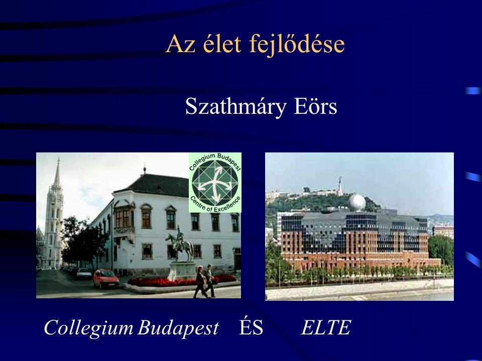Az élet fejlődése Szathmáry Eörs Collegium Budapest ÉS ELTE