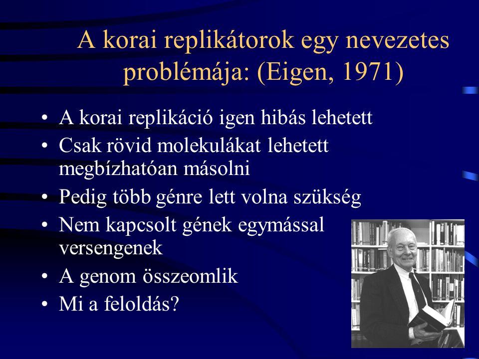 A korai replikátorok egy nevezetes problémája: (Eigen, 1971)