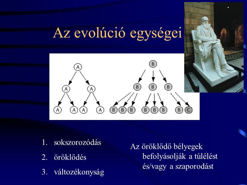 Az evolúció egységei sokszorozódás öröklődés