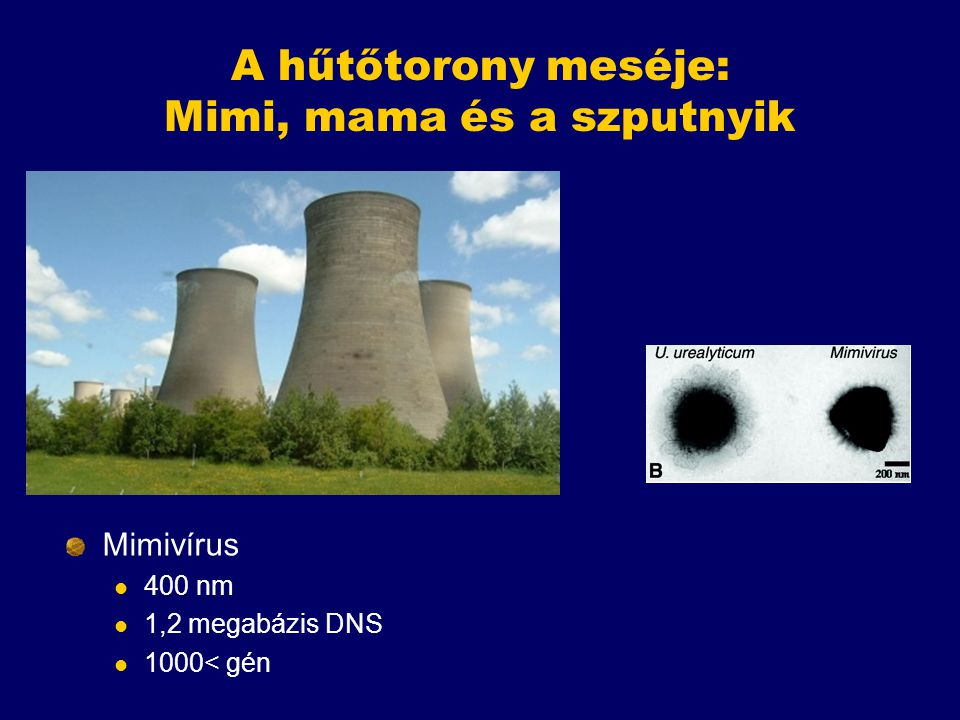 A hűtőtorony meséje: Mimi, mama és a szputnyik