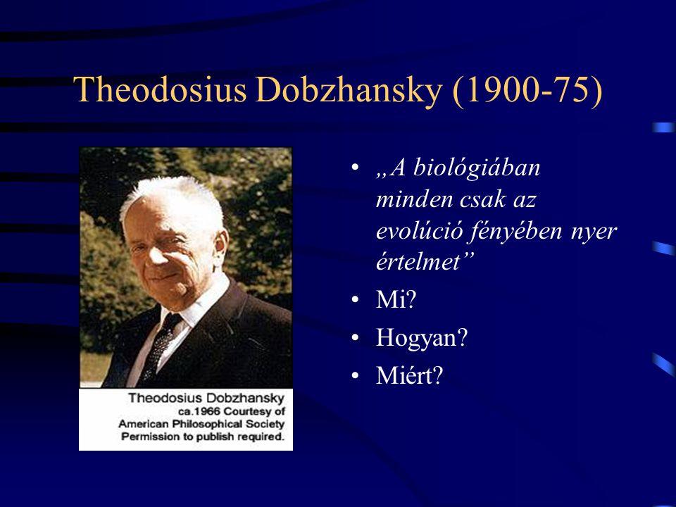 Theodosius Dobzhansky (1900-75)