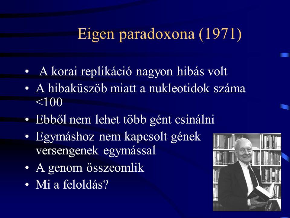 Eigen paradoxona (1971) A korai replikáció nagyon hibás volt