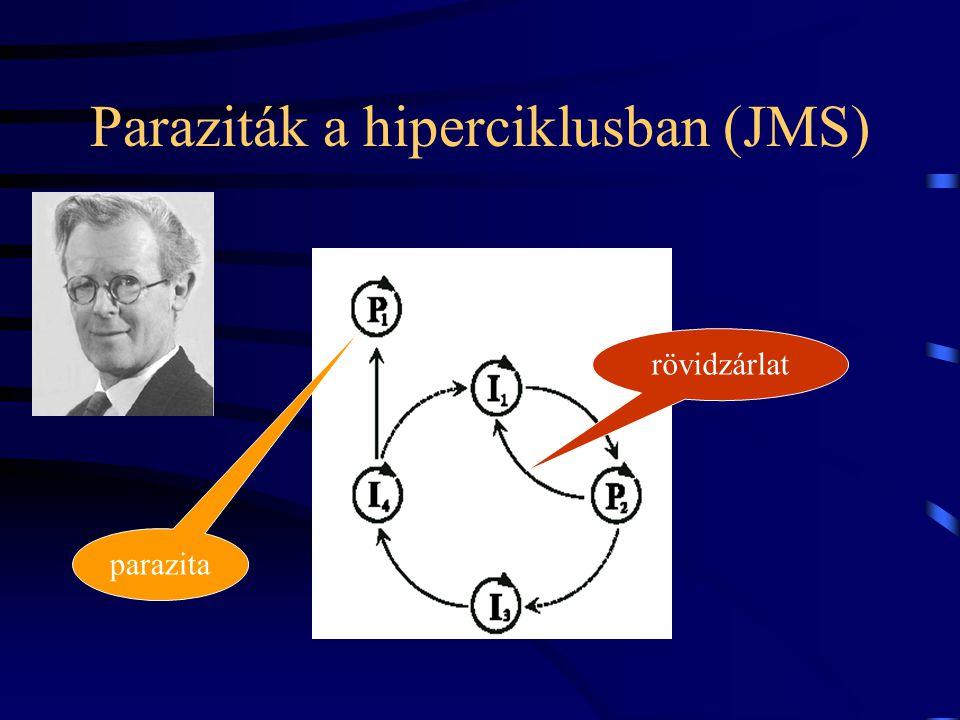 Paraziták a hiperciklusban (JMS)