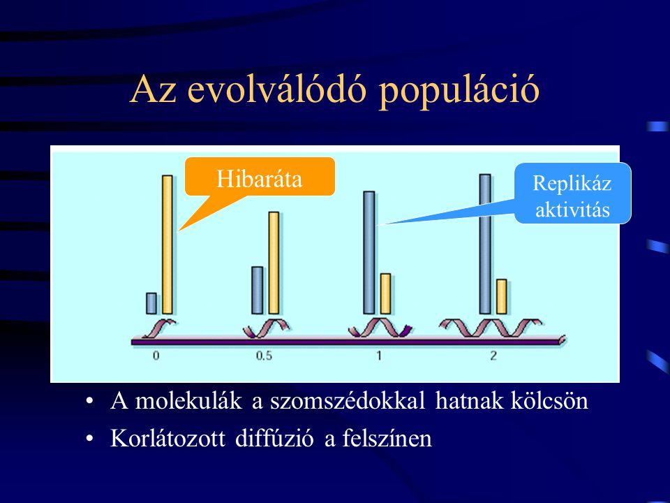 Az evolválódó populáció