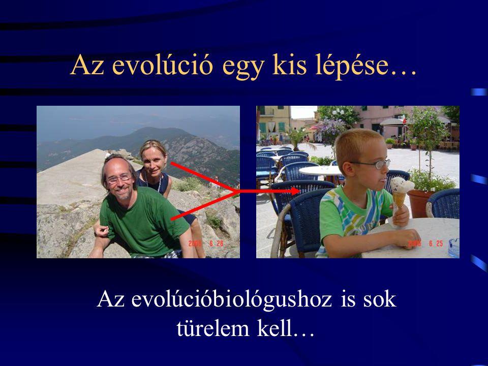 Az evolúció egy kis lépése…