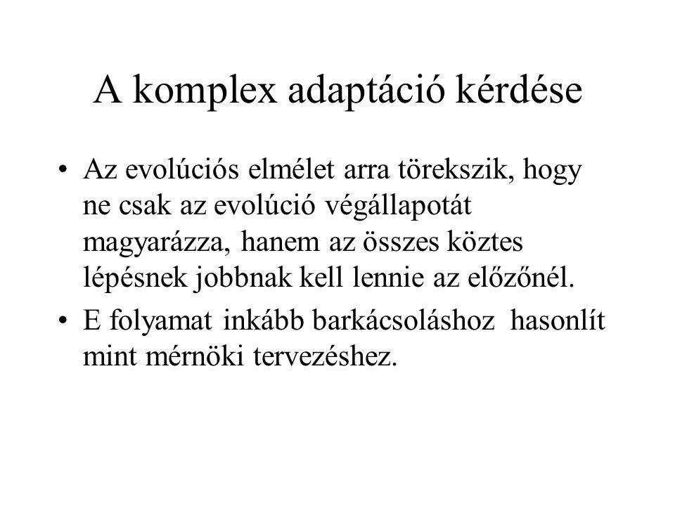 A komplex adaptáció kérdése