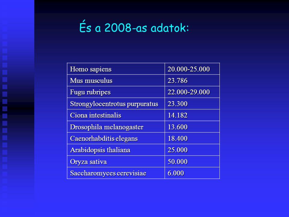 És a 2008-as adatok: Homo sapiens 20.000-25.000 Mus musculus 23.786