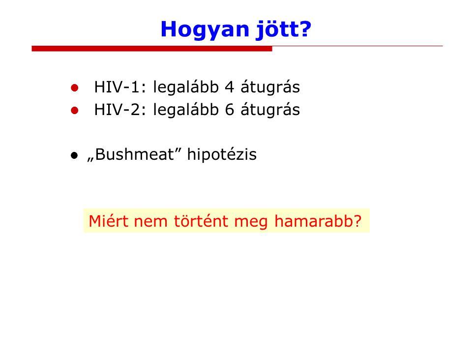 Hogyan jött HIV-1: legalább 4 átugrás HIV-2: legalább 6 átugrás