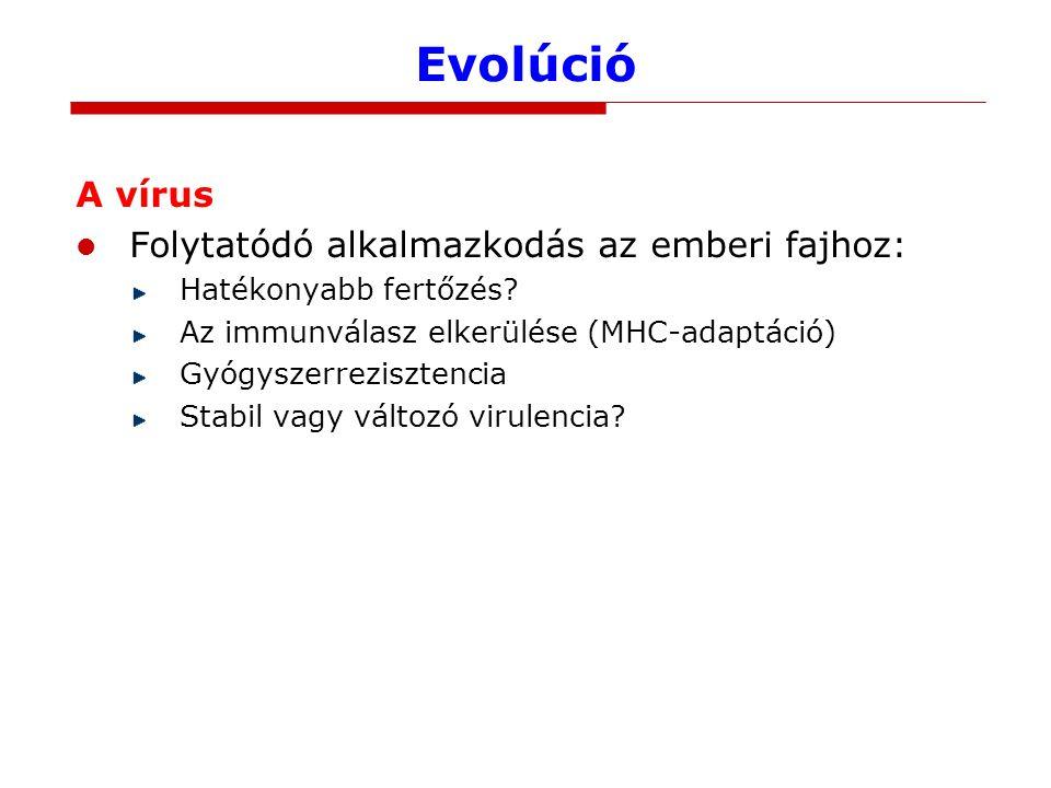Evolúció A vírus Folytatódó alkalmazkodás az emberi fajhoz: