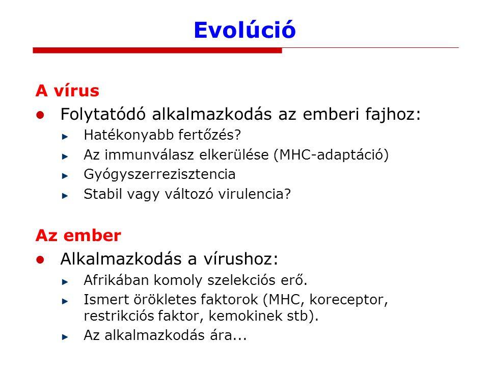 Evolúció A vírus Folytatódó alkalmazkodás az emberi fajhoz: Az ember