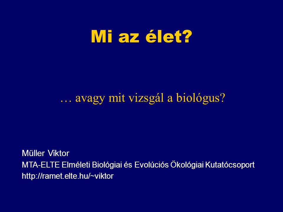Mi az élet … avagy mit vizsgál a biológus Müller Viktor