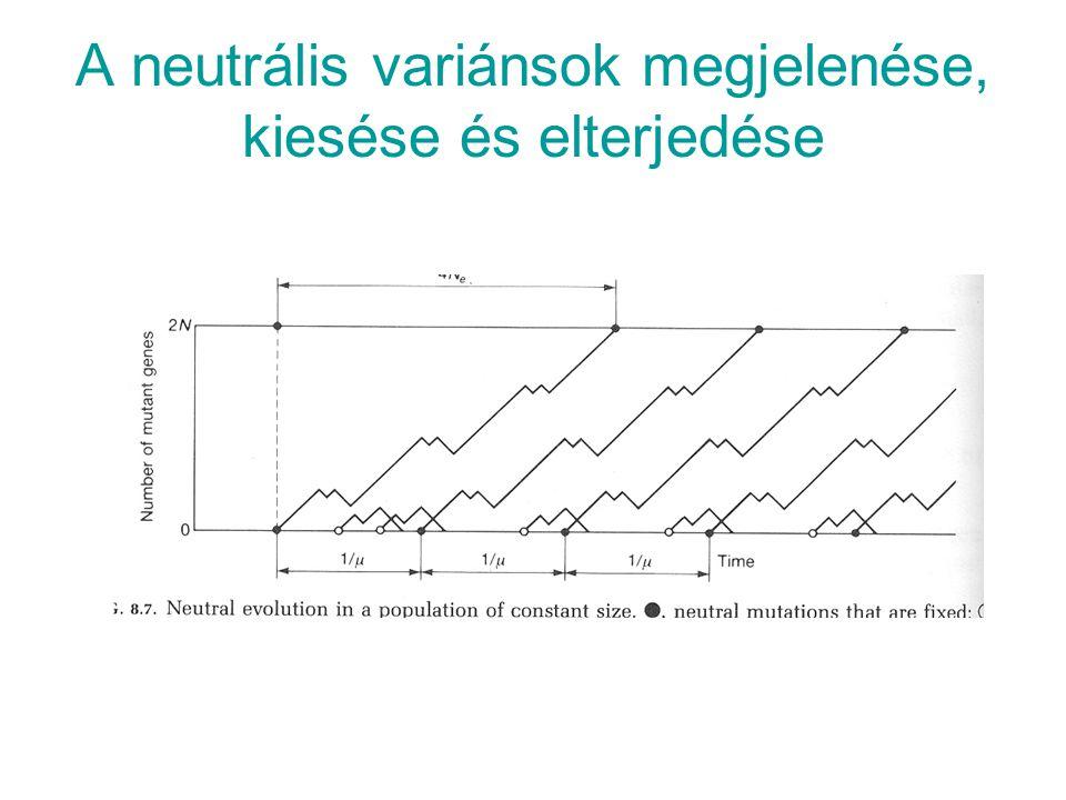 A neutrális variánsok megjelenése, kiesése és elterjedése