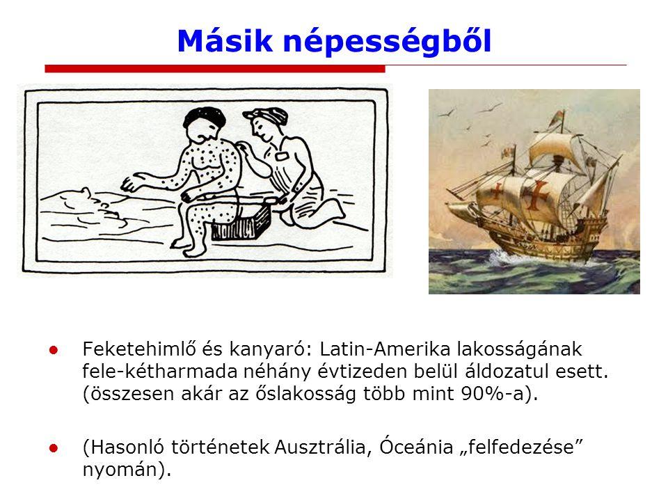 Másik népességből 16. századi azték rajz kanyarós betegről. A Santa Maria pedig Kolumbusz zászlóshajója volt.