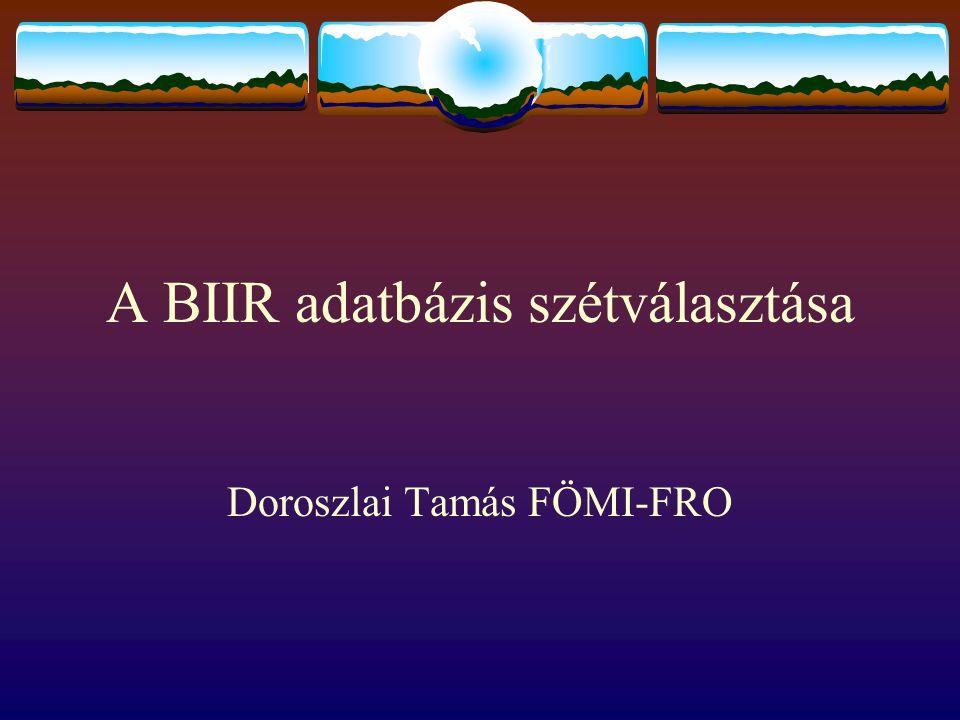 A BIIR adatbázis szétválasztása