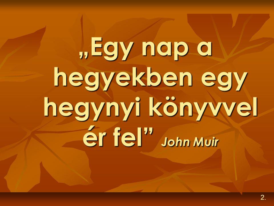 """""""Egy nap a hegyekben egy hegynyi könyvvel ér fel John Muir"""