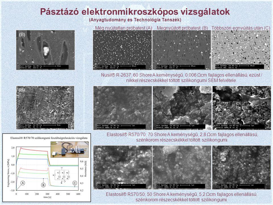 Pásztázó elektronmikroszkópos vizsgálatok