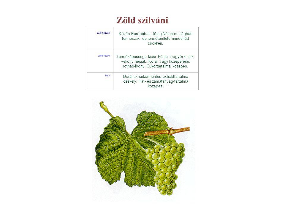 Zöld szilváni Származása: Közép-Európában, fõleg Németországban termesztik, de termõterülete mindenütt csökken.