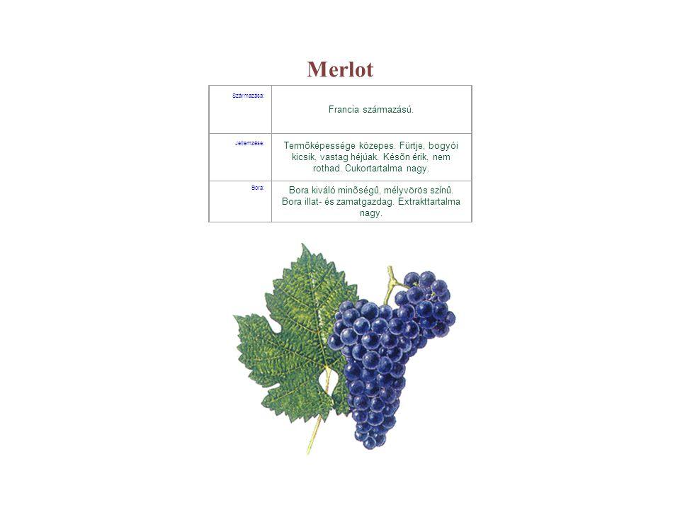 Merlot Francia származású.