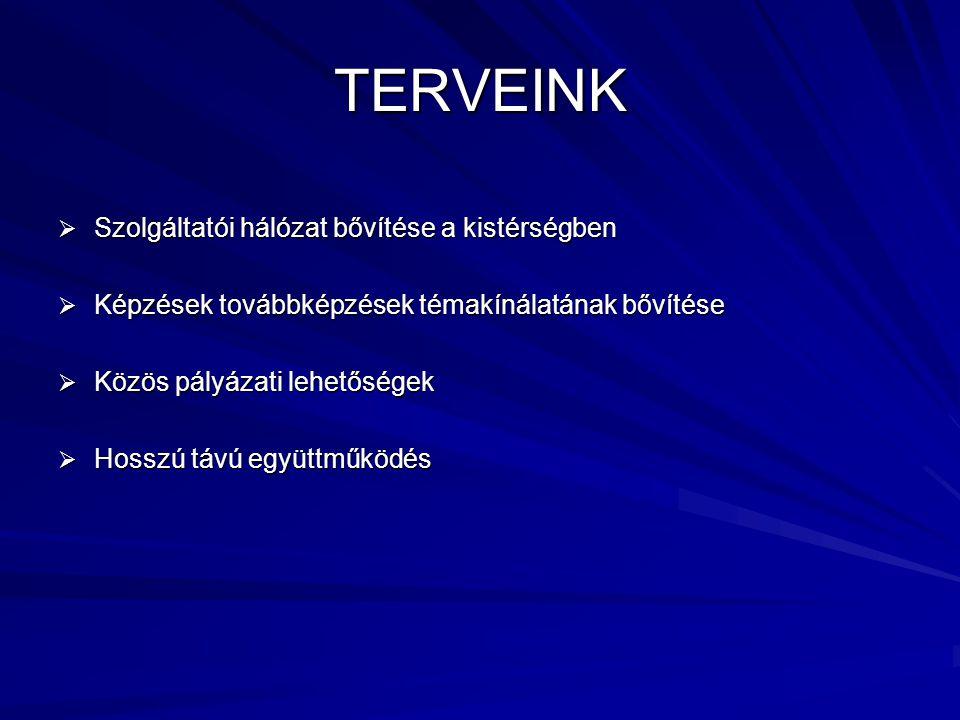 TERVEINK Szolgáltatói hálózat bővítése a kistérségben