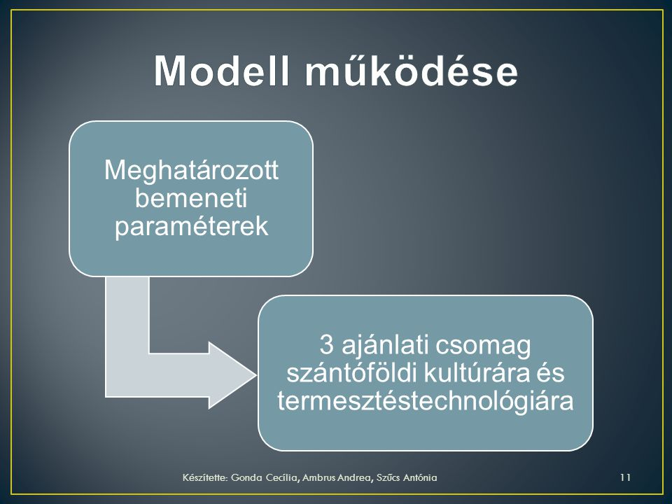 Modell működése Meghatározott bemeneti paraméterek