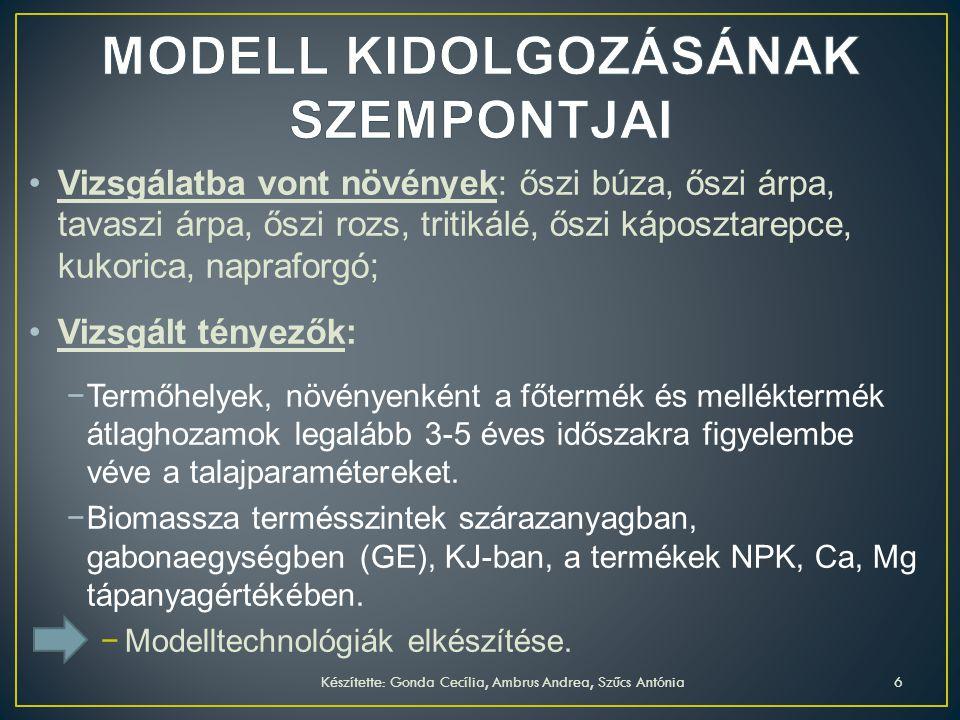 MODELL KIDOLGOZÁSÁNAK SZEMPONTJAI