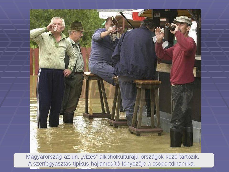 """Magyarország az un. """"vizes alkoholkultúrájú országok közé tartozik."""