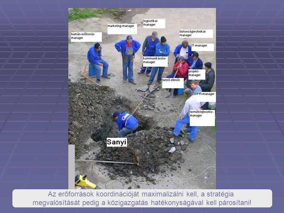 az erőforrások koordinációját maximalizálni kell