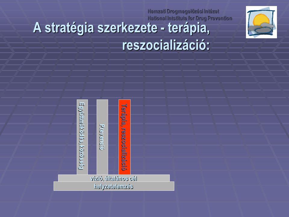 A stratégia szerkezete - terápia, reszocializáció: