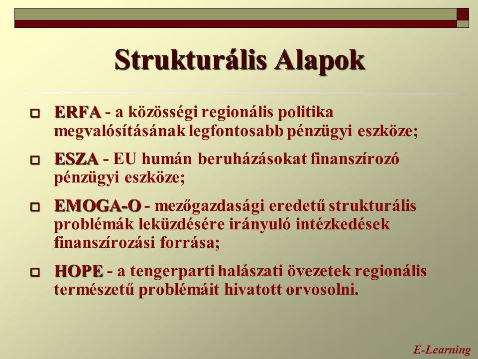 Strukturális Alapok ERFA - a közösségi regionális politika megvalósításának legfontosabb pénzügyi eszköze;