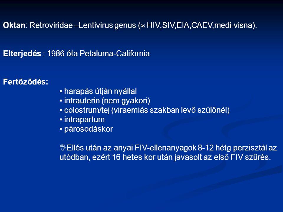 Oktan: Retroviridae –Lentivirus genus ( HIV,SIV,EIA,CAEV,medi-visna).