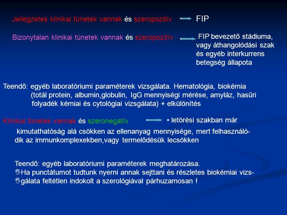 FIP Jellegzetes klinikai tünetek vannak és szeropozitív