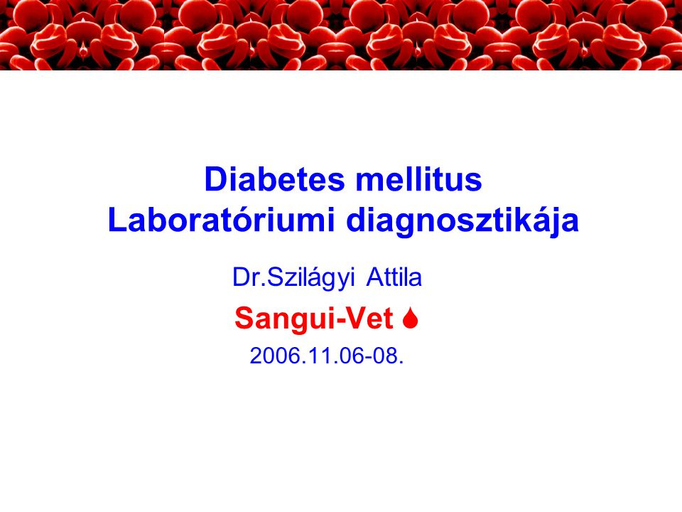 Dr.Szilágyi Attila Sangui-Vet  2006.11.06-08.