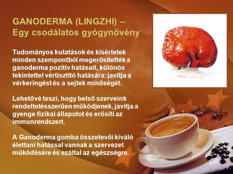GANODERMA (LINGZHI) – Egy csodálatos gyógynövény Tudományos kutatások és kísérletek minden szempontból megerősítették a ganoderma pozitív hatásait, különös tekintettel vértisztító hatására: javítja a vérkeringést és a sejtek minőségét.