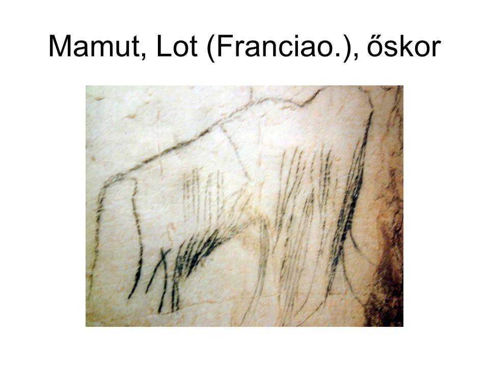 Mamut, Lot (Franciao.), őskor