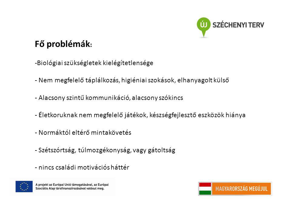 Fő problémák: Biológiai szükségletek kielégítetlensége