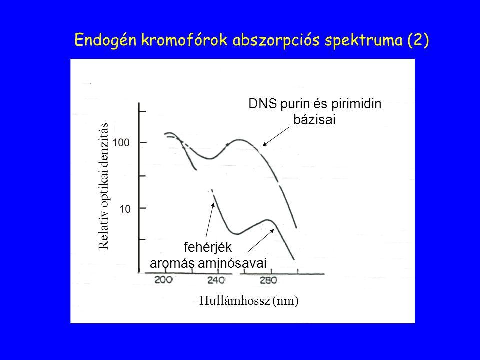 Endogén kromofórok abszorpciós spektruma (2)