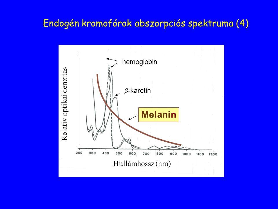 Endogén kromofórok abszorpciós spektruma (4)